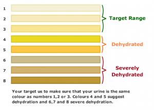 acqua-urine-idratazione